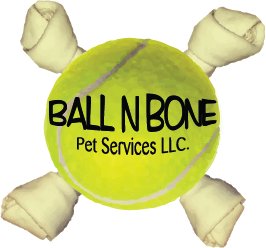 Ball N Bone Logo
